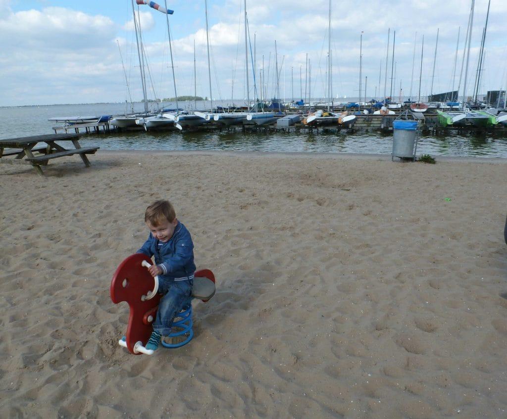Foto van koter op wipkip op het strand