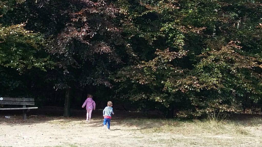 Foto van kindjes die rennen naar een bos