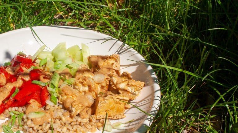 Buddha bowl in gras: parelspelt, groente en knapperige tofu in een witte kom